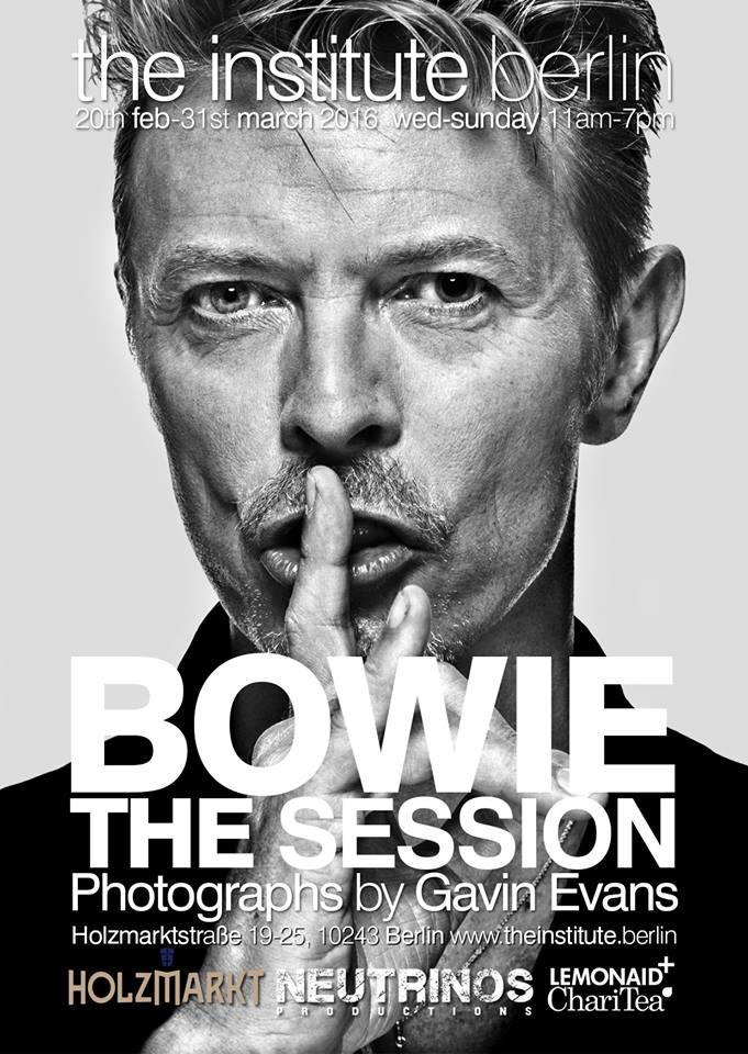 Gavin Evans, Bowie